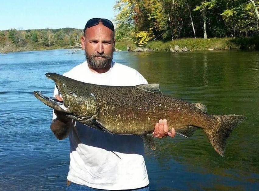 northern Michigan king salmon