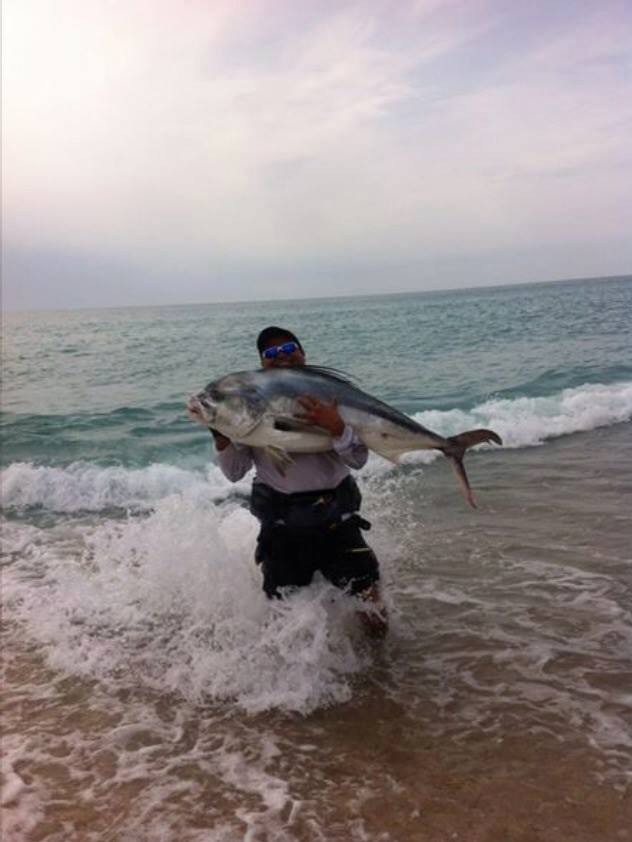 61 pound roosterfish, the East Cape, Baja, caught on a X -rap from shore.