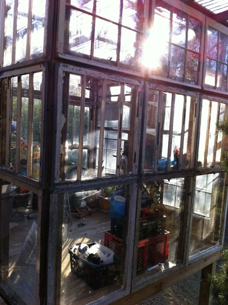 From Lori Lewis Wedgeworth‎: A greenhouse (8 X 8) my husband built. Antique cypress Windows that took me about 9 months to collect about 60 Windows & then rode out 5' water during Isaac.
