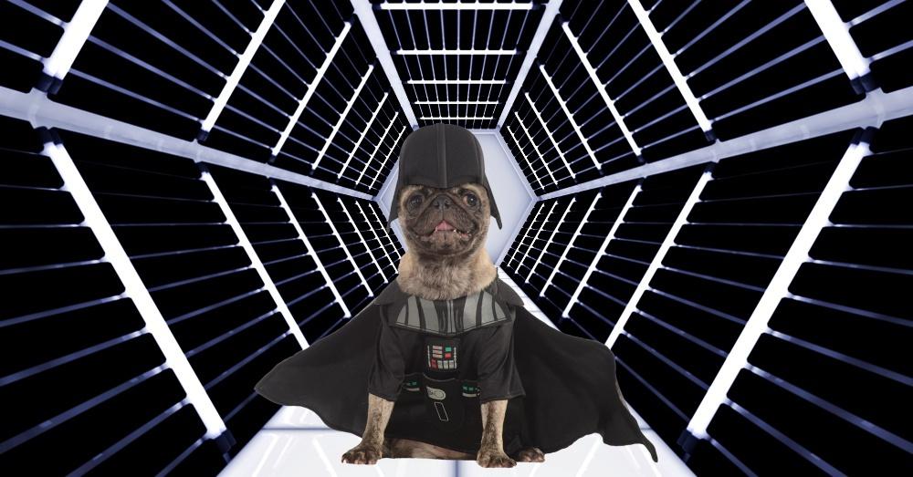 Vader in Room