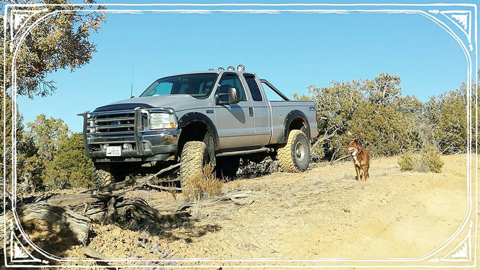 From Sunnshine Richman: My friends 03 ford with 6 in lift with my aussi shep.