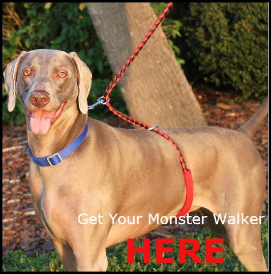 Monster Walker Ad Text