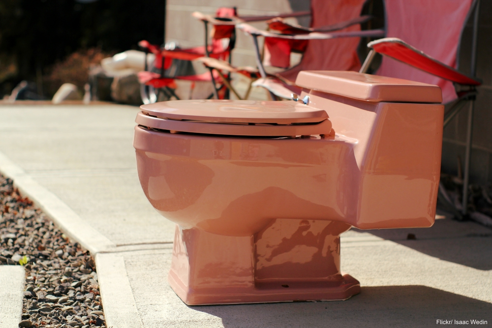 Pink Toilet on Sidewalk