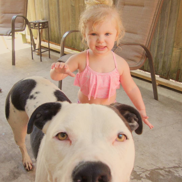 baby and pit 5
