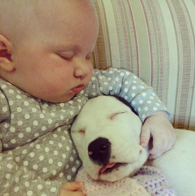 baby and pitt