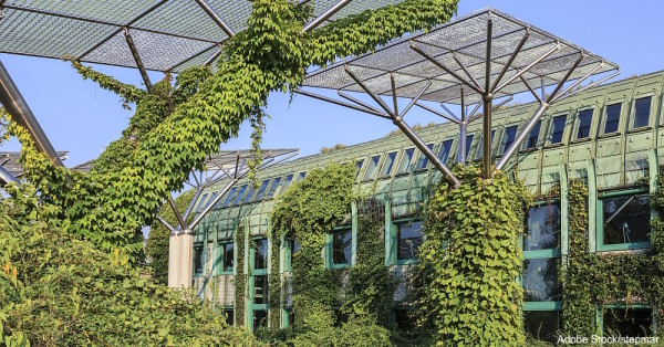 Gardens on the roof of the library of the University of Warsaw