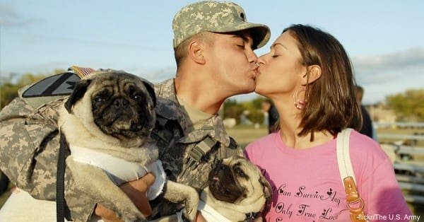 dog-deployment2 flickr:The U.S. Army
