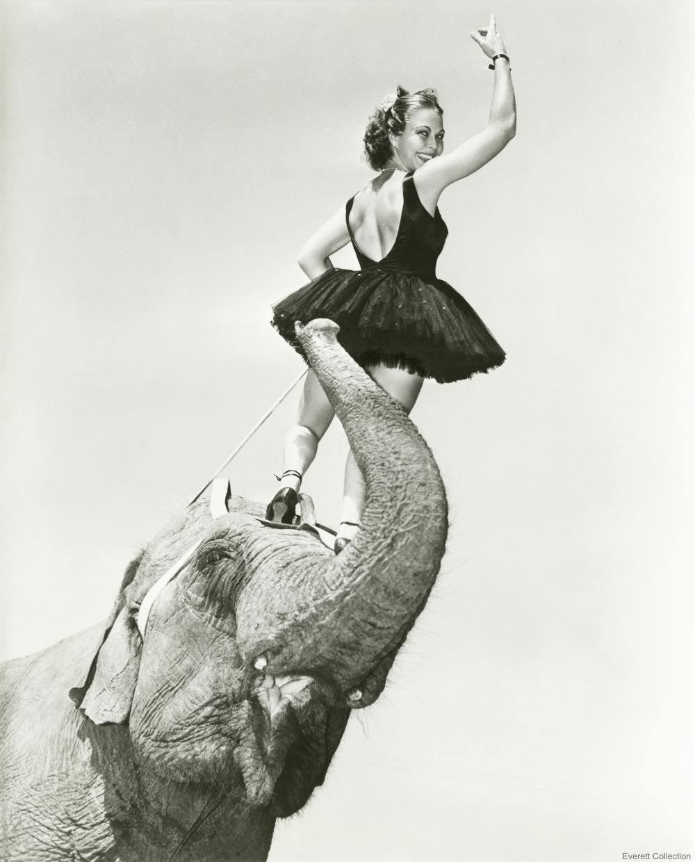 Performer Atop Circus Elephant