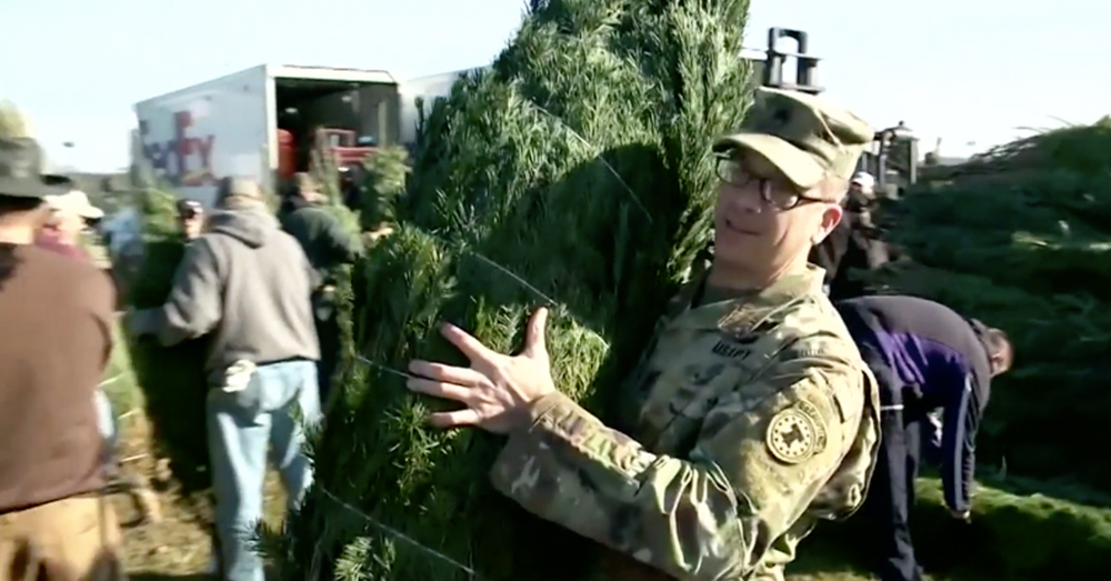 trees for troops 2