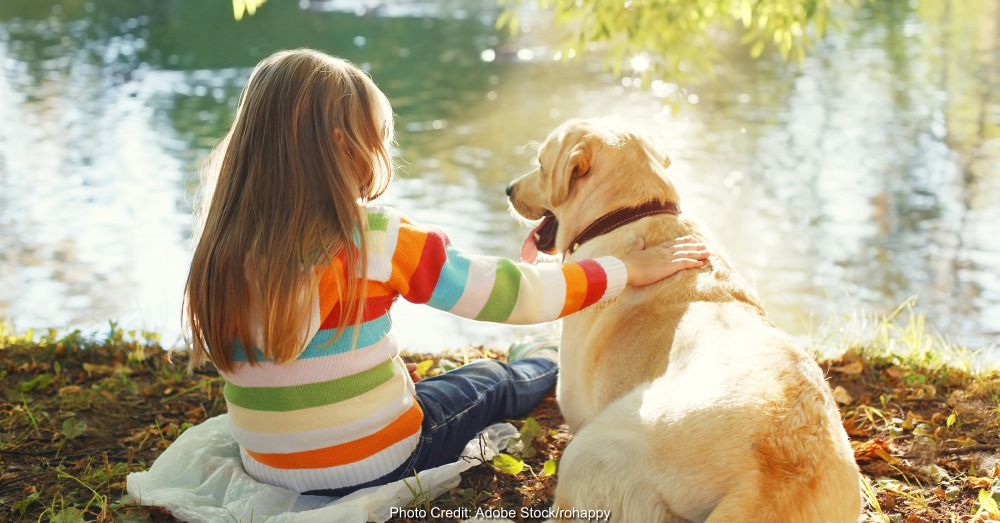 Two friends, child with Labrador retriever dog sitting in sunny