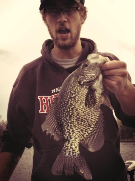 16 1/2 inch crappie