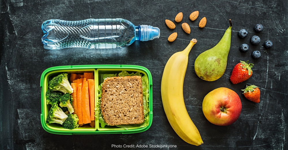 School lunch box with sandwich, vegetables, water and fruits
