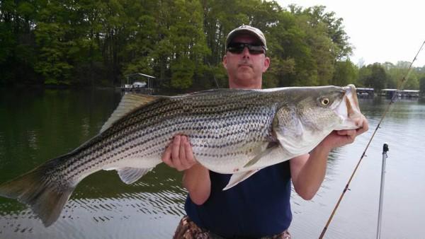 From Chris Schmidt: Lake Lanier April tournament big fish