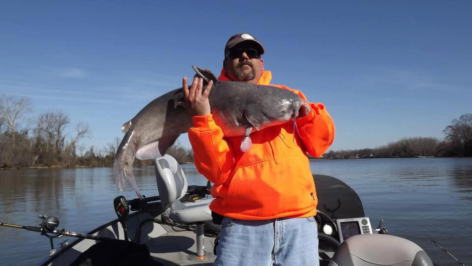 From Jamie W:  40lb cat caught in the James river