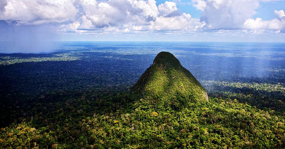 Photo Credit: Diego Perez via Rainforest Trust