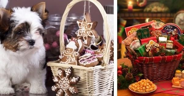puppy-christmas-basket_1000x523-600x314-horz