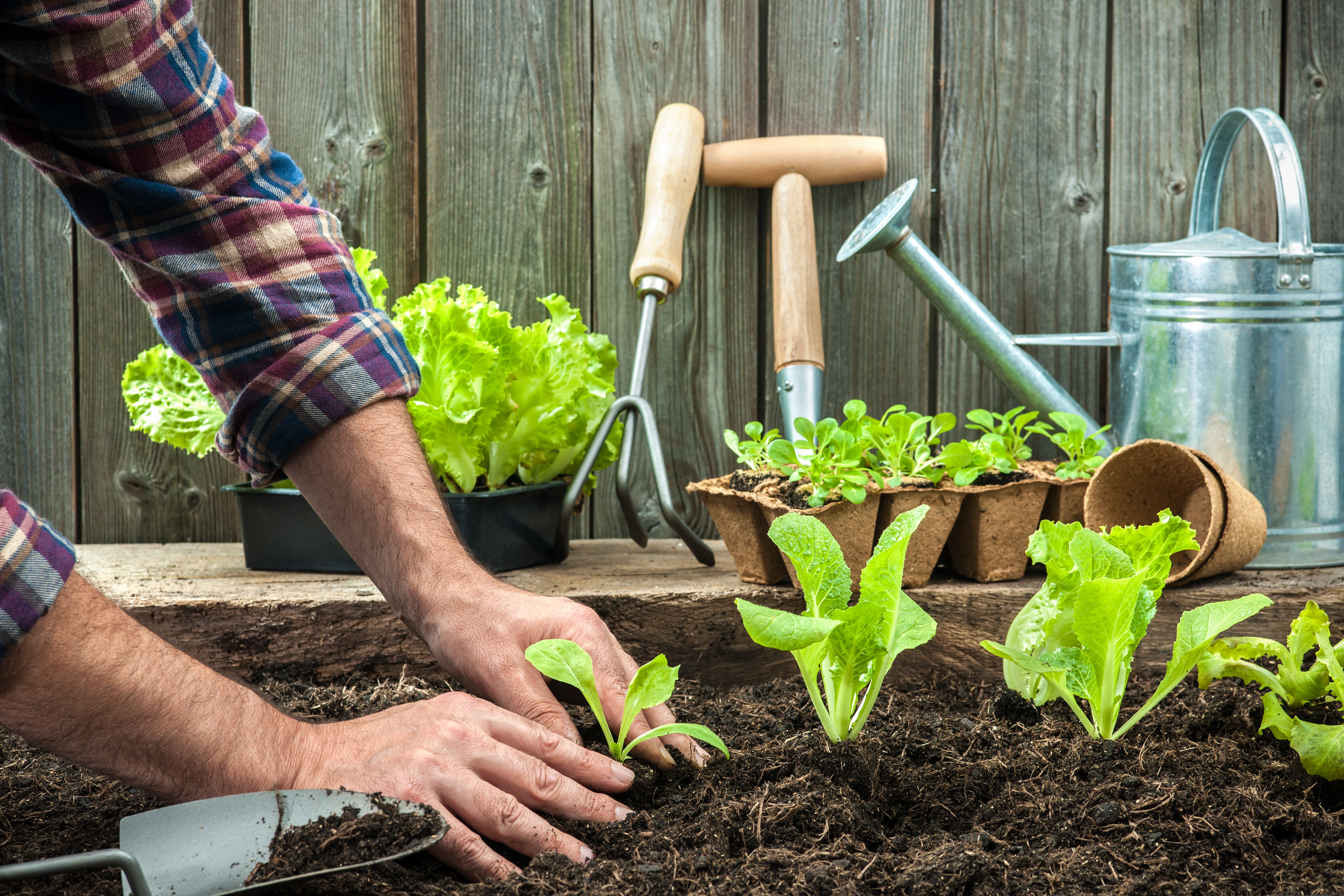 Garden Design With How Gardening Is Good For Your Health U The Humble
