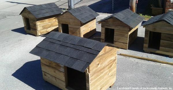cs-florida-doghouses1