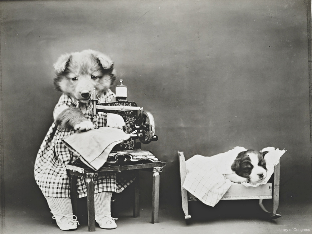 Dog and Toy Sewing Machine