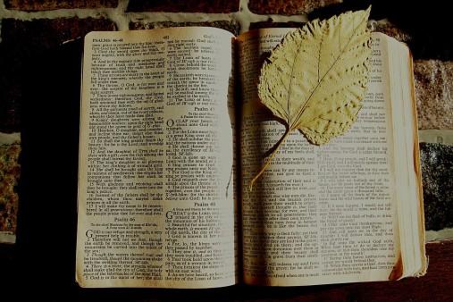 bible-1166261_960_720