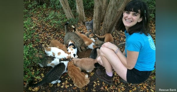With the support of Rescue Bank, Hendrix College was able to spay and neuter nearly an entire colony of feral cats.