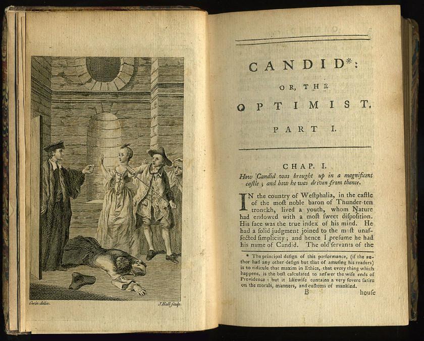 Voltaire book