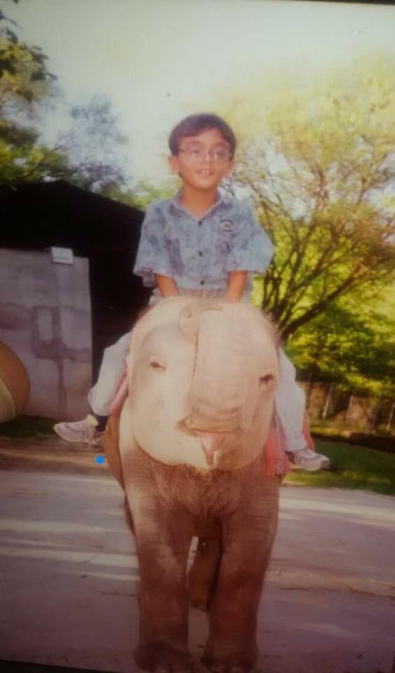 Kaman when he was a calf. facebook.com/kaavantheelephant