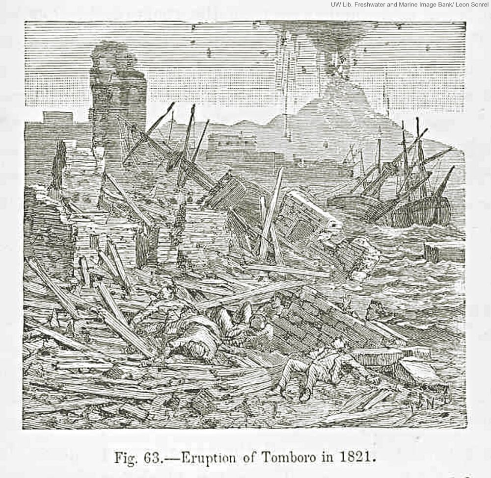 1821 Mount Tamboro Eruption Engraving by Leon Sonrel