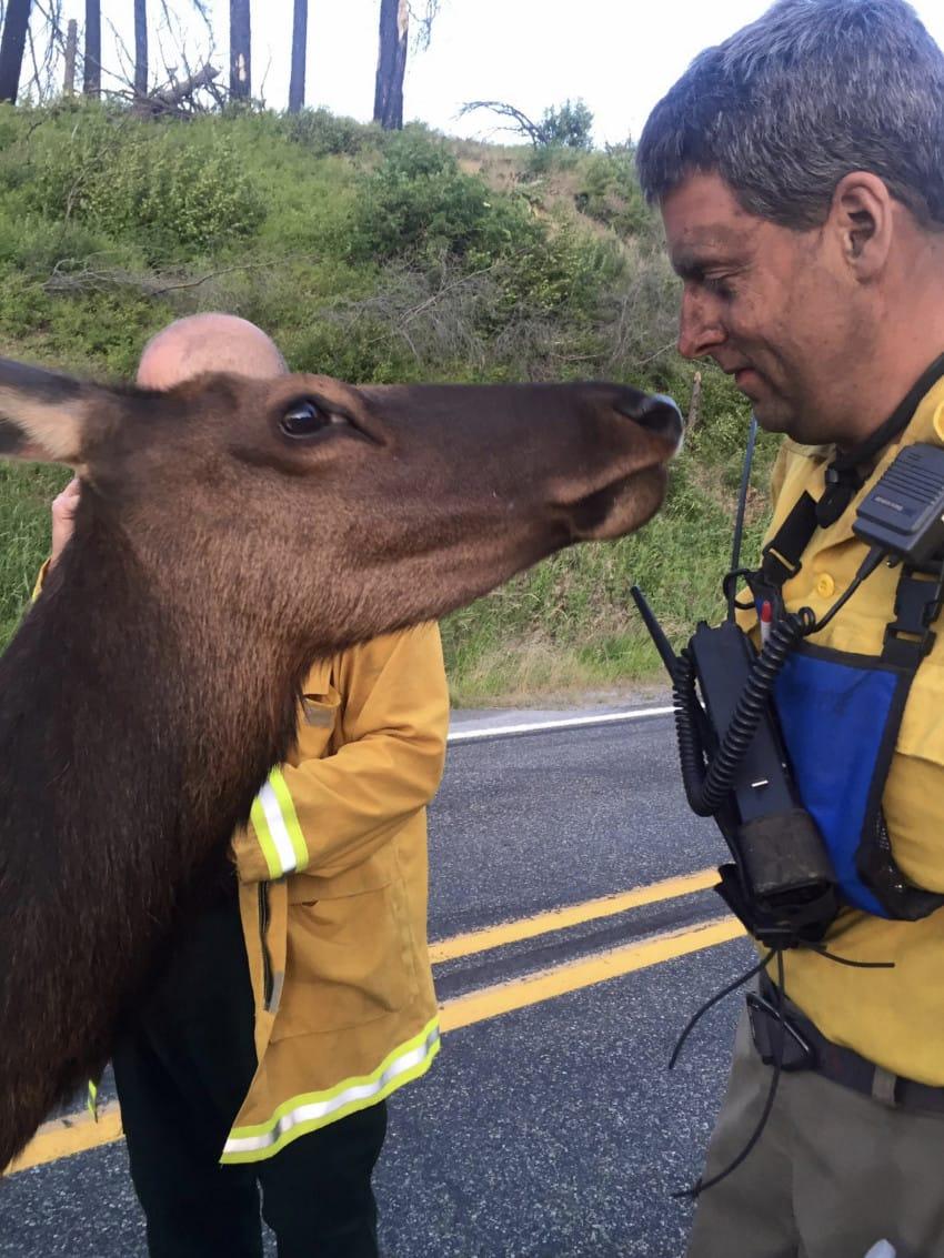 Kittitas County Fire District #7