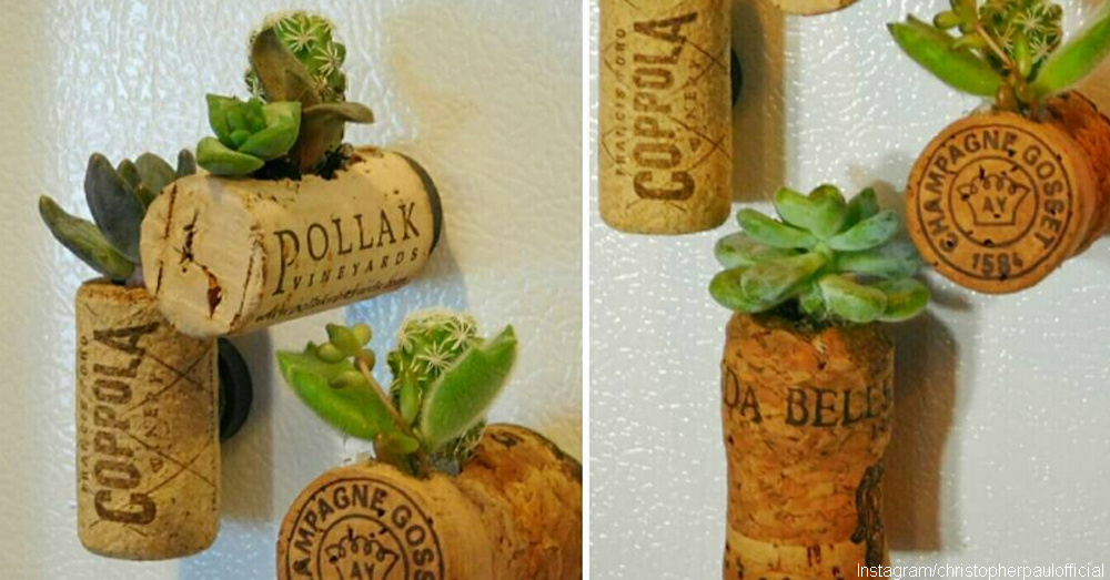 cs-wine-bottle-garden-3