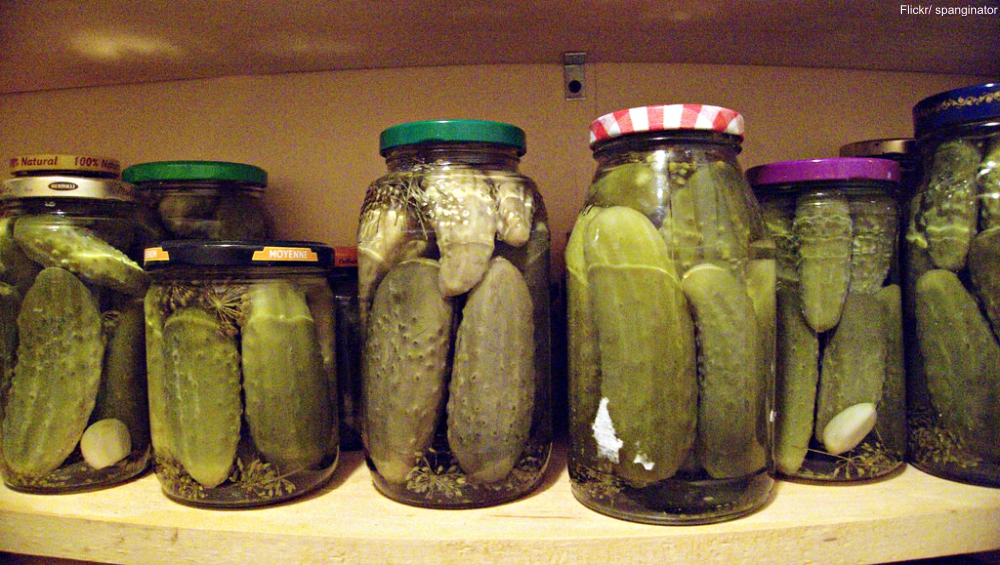 Reused Jars for Pickling