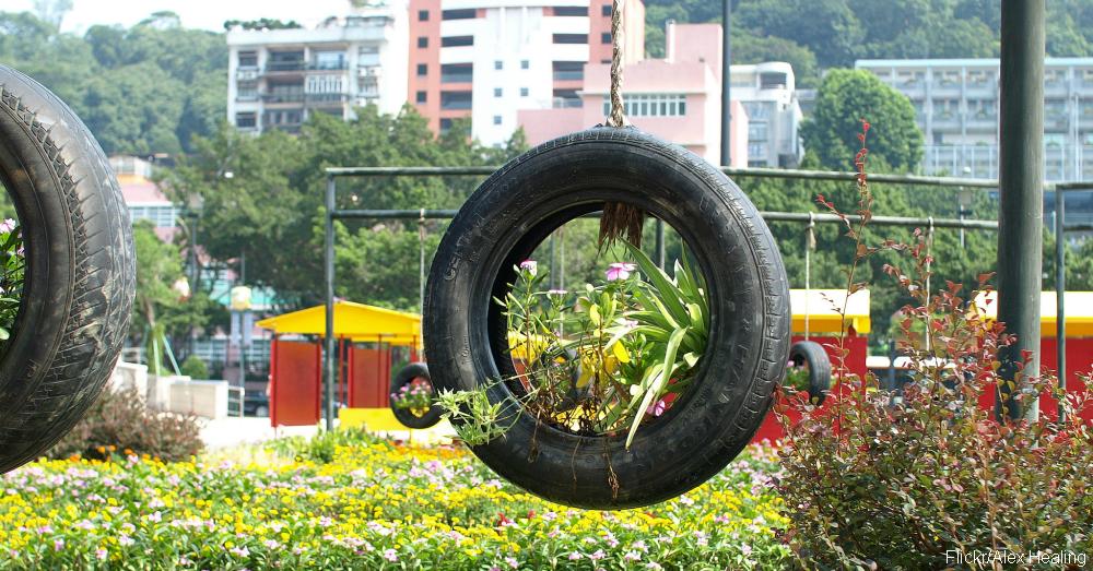 cs-garden-tires-plant4