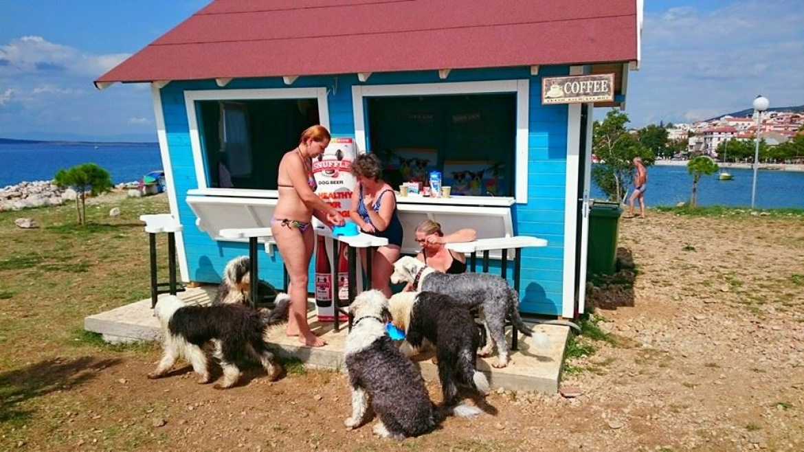 Monty's Dog Beach Bar