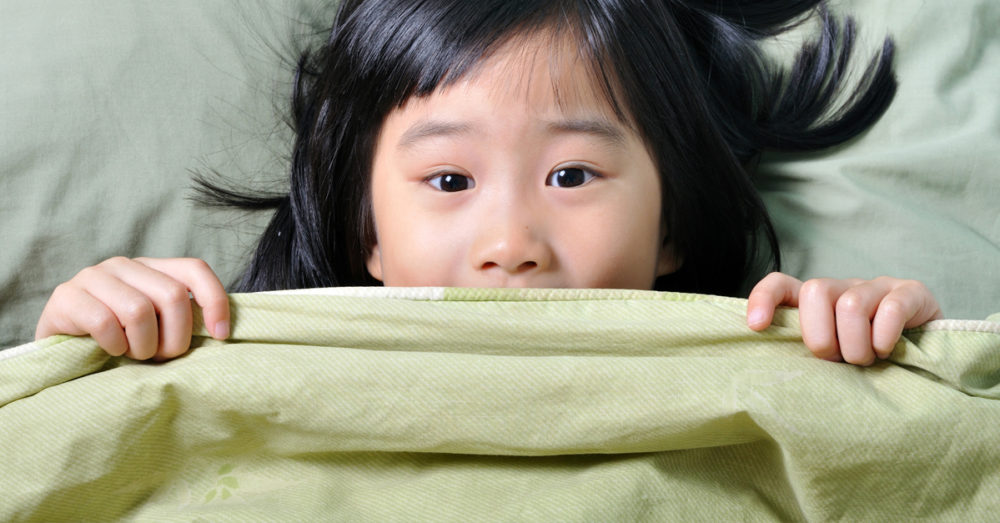Easy Diy How To Make A Weighted Sensory Blanket The