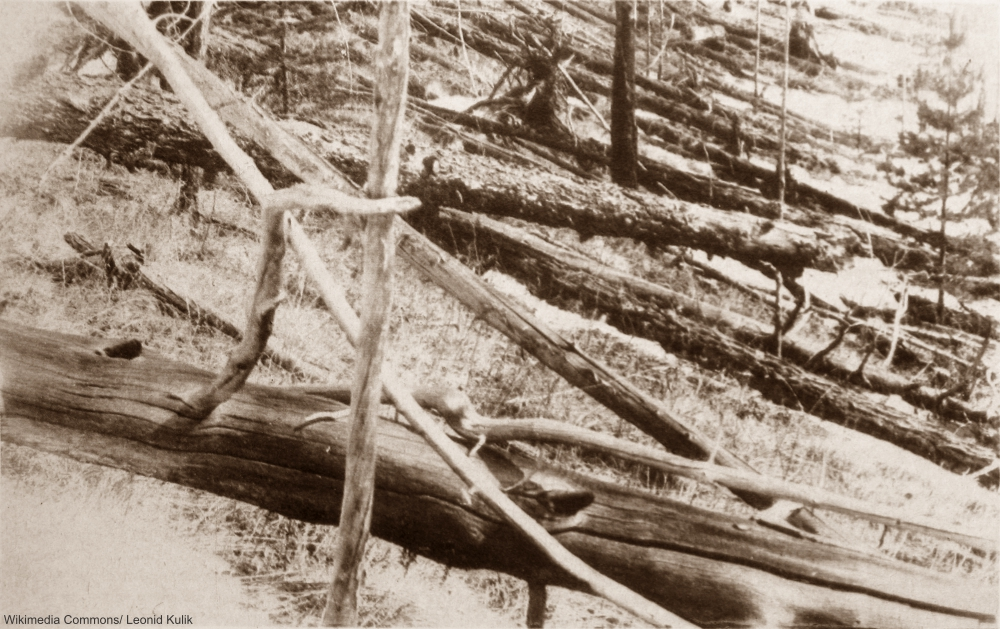 Tunguska Russia After the 1908 Event