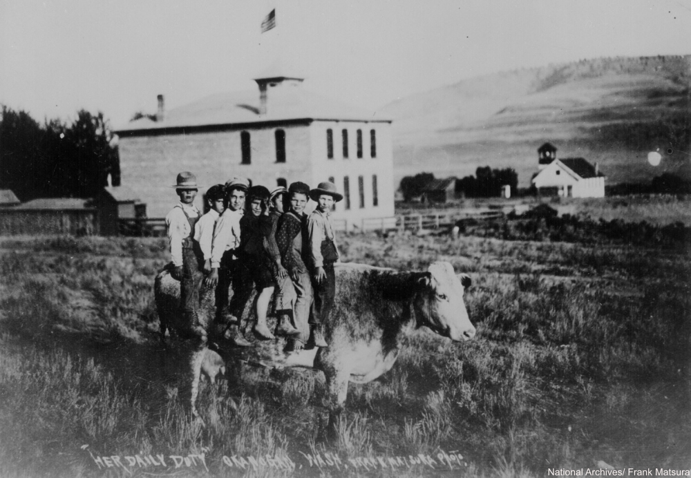 1907 Frontier children on cow