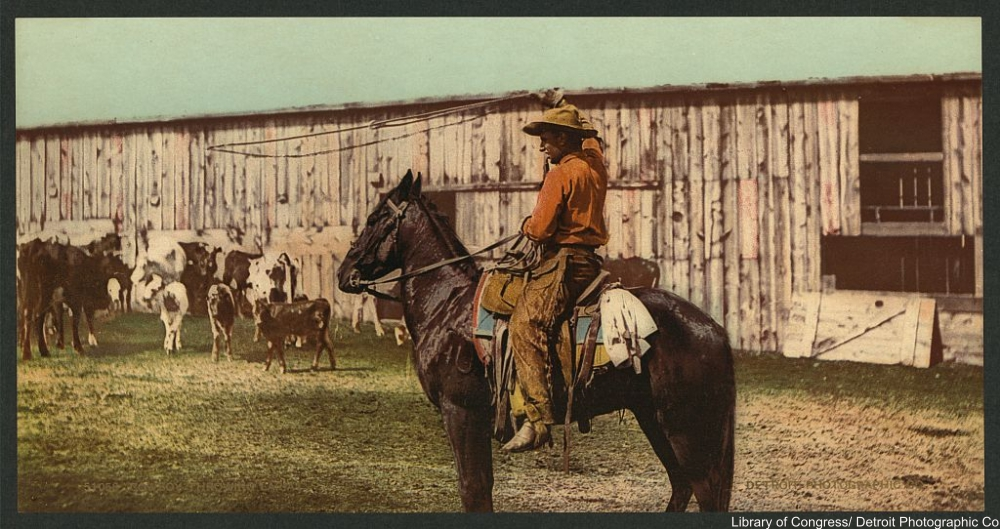 cowboy circa 1898 tinted photo