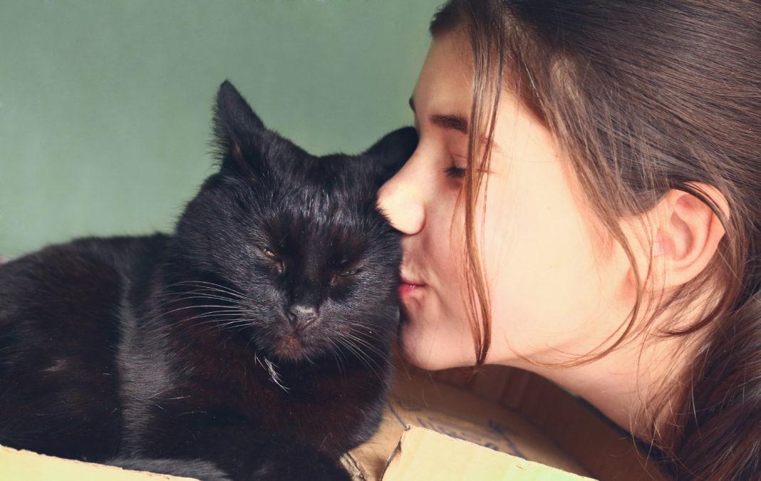 teen  pretty girl kiss black cat close up portrait