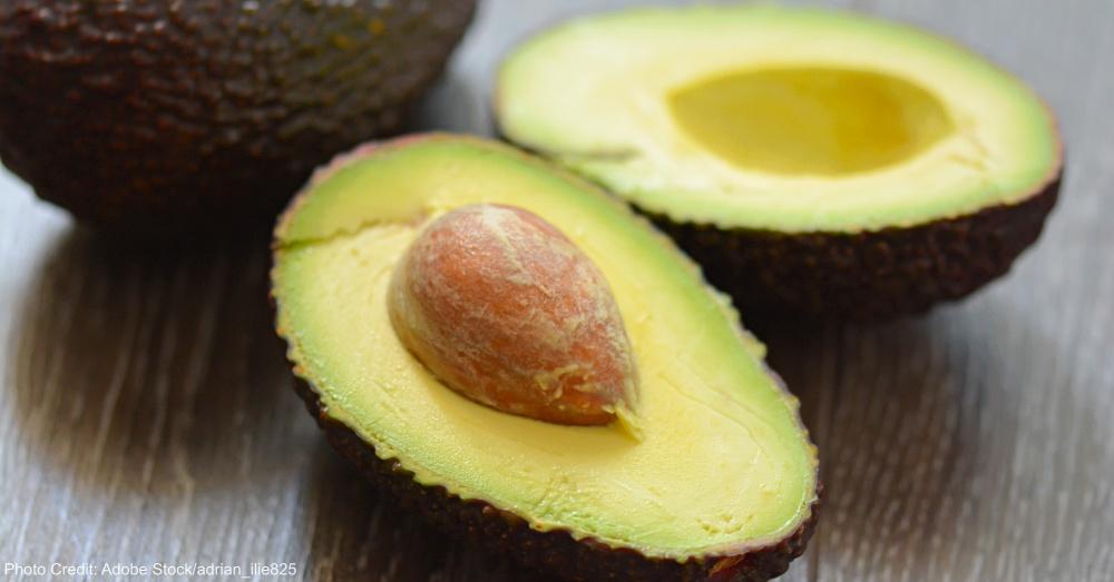Fresh avocado fruit cross section