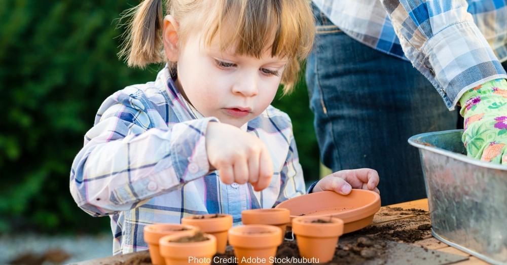 little girl gardener planting flower bulbs with her mom