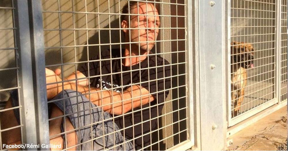 gaillard-cage1