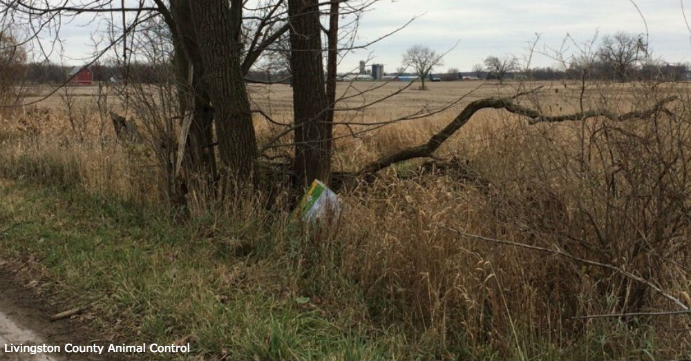 Animal control officers arrived at the unsettling scene on Nov. 26 to find a single bag of dog food contained the body of a dead beagle.