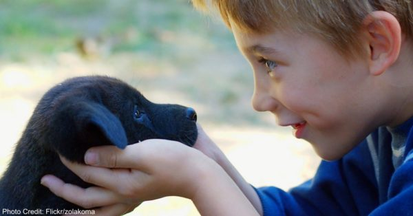A boy and puppy making eye contact