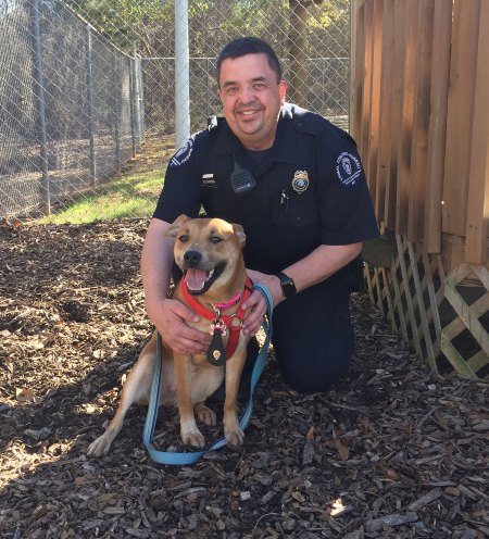 COURTESY CMPD ANIMAL CARE AND CONTROL