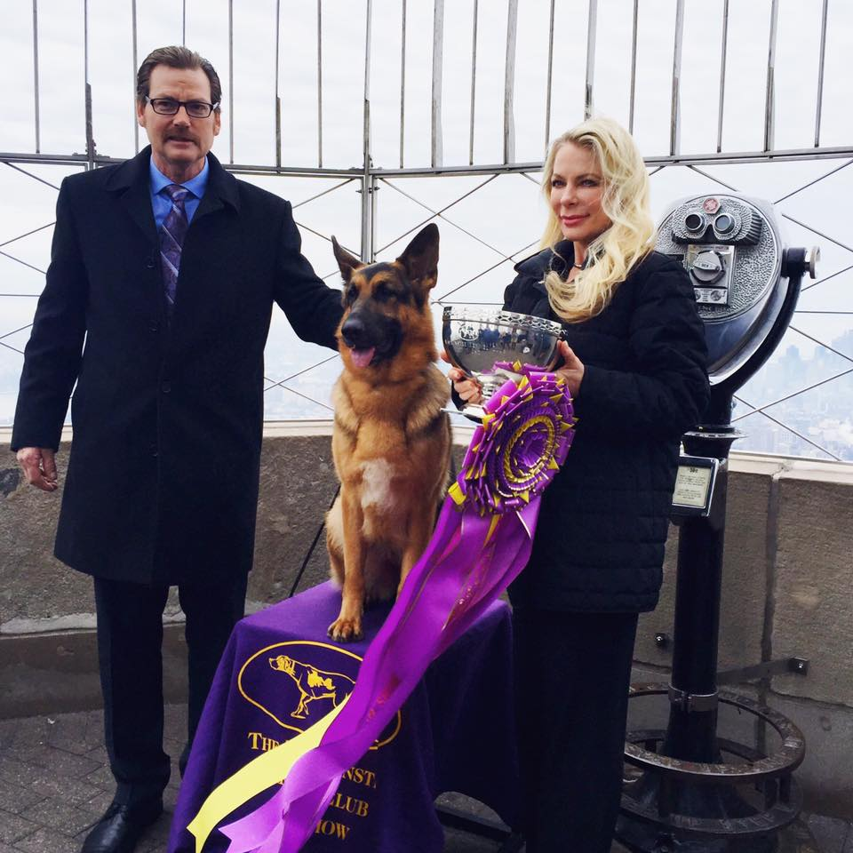 Credit: Westminster Kennel Club Dog Show