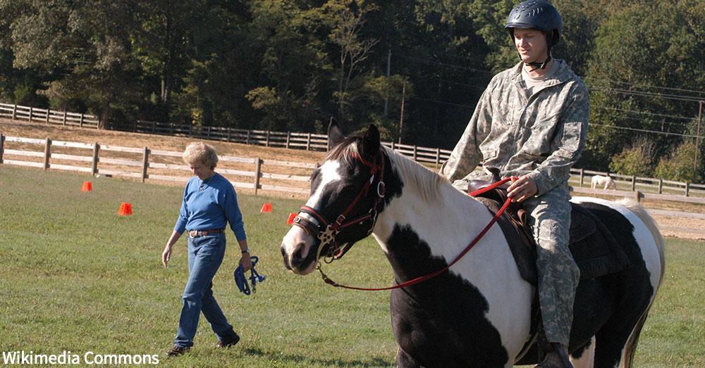equine-therapies2
