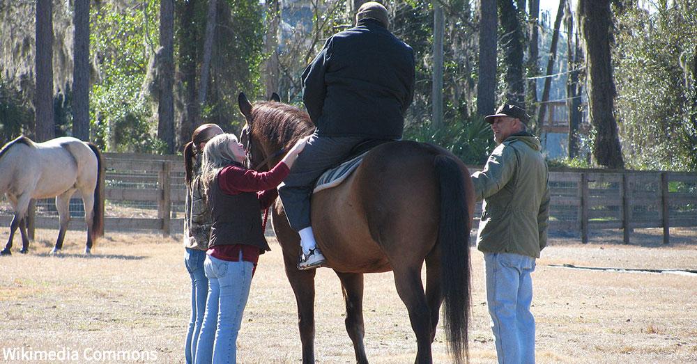 equine-therapies4