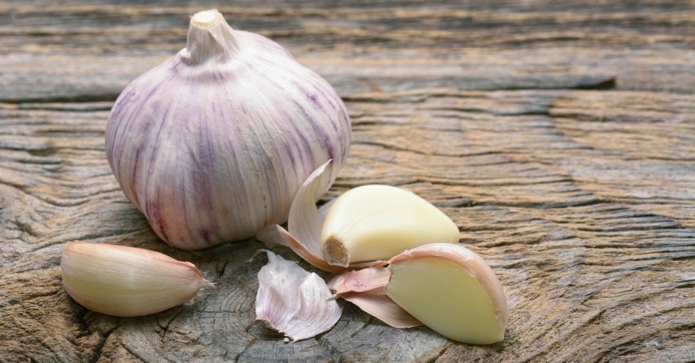 garlic-facts-1