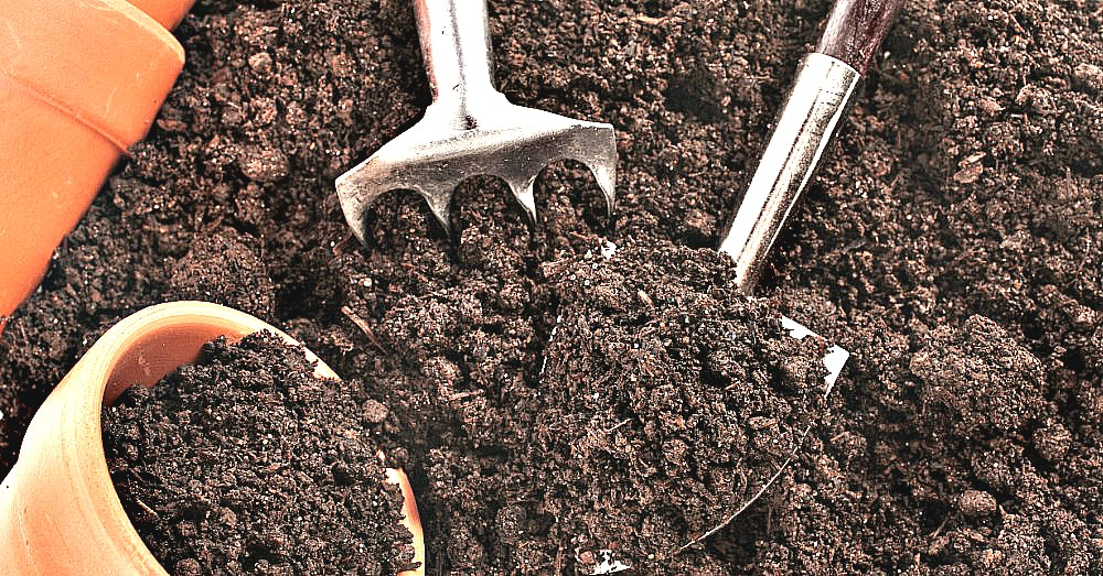 revive-old-potting-soil