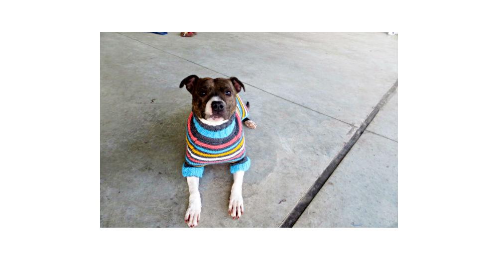 sweaterw1